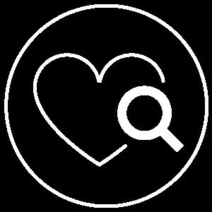 Health Audit icon